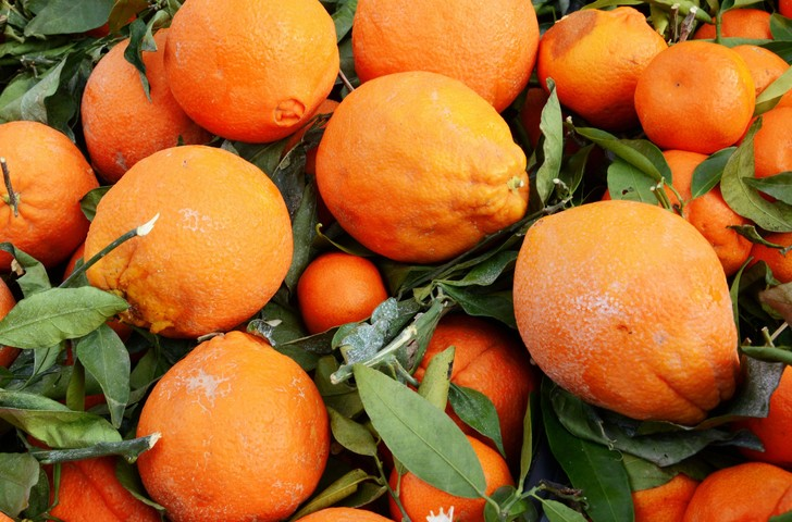 Фото №1 - Апельсины оказались полезны в борьбе с лишним весом