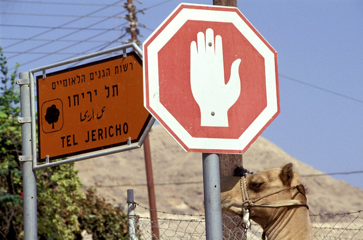 Фото №4 - Менять как перчатки: нюансы проката автомобилей в разных уголках света