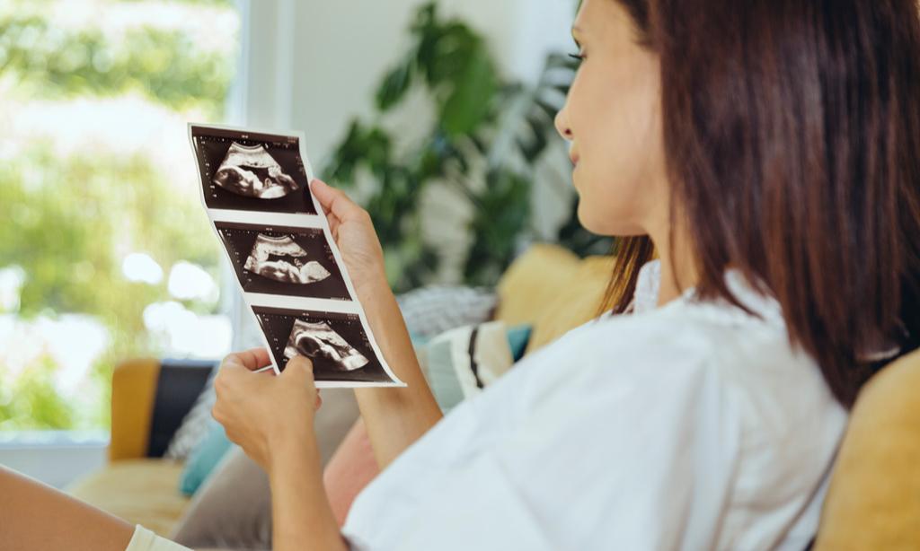 Превращения день за днем: как меняется малыш в животе у мамы
