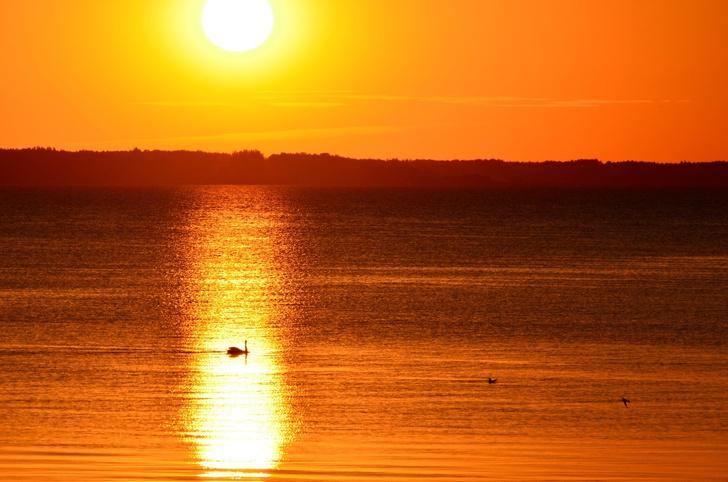 Фото №7 - Псковское чудо: 12 тайн Чудского озера