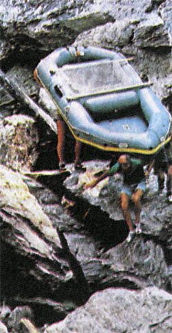 Фото №3 - Вниз по последней реке