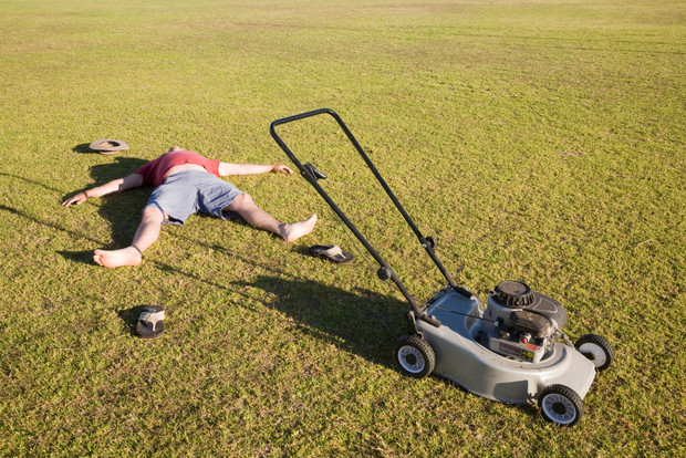 Фото №1 - Смешная переписка: парень пытается обменять газонокосилку на автомобиль