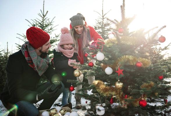 Фото №1 - Тест: как провести зимние каникулы?