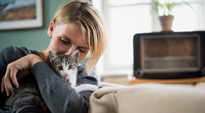 Кошки против собак: как выбор домашнего питомца разрушил отношения пары