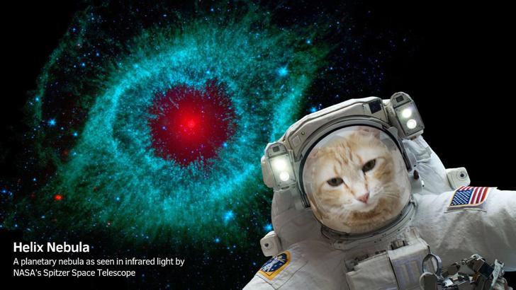 Фото №1 - НАСА выпустило космическое приложение для смартфонов
