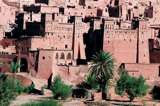 Фото №12 - Берберский след туарегов
