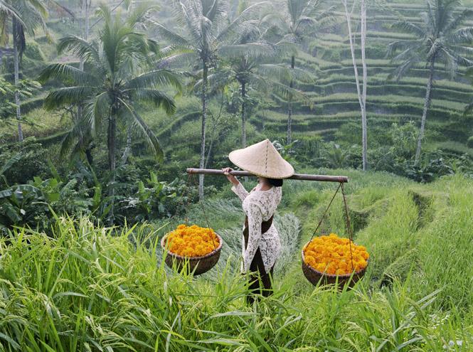 Фото №4 - Slow life на Бали: что это и чем она так привлекает европейцев