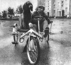 Фото №2 - Город солнца и велосипедов