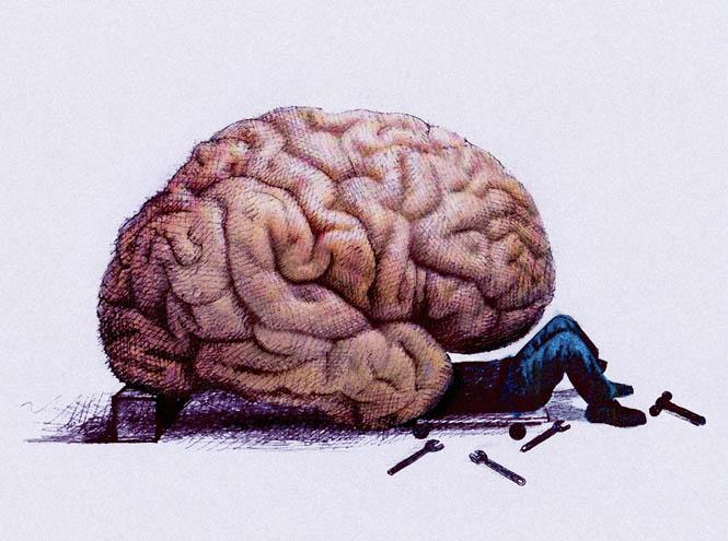 Фото №2 - Как повысить работоспособность мозга
