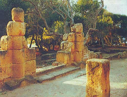 Фото №1 - Камни Типазы