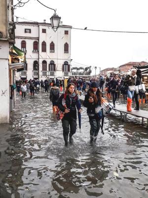 Фото №2 - Летучая в сапогах гуляет по затонувшей Венеции