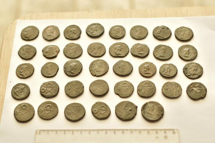 Фото №1 - На Кубани обнаружены античные монеты