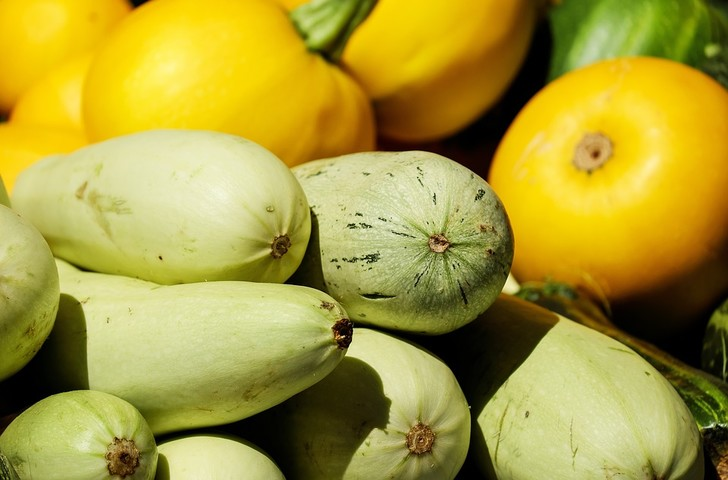 кабачки: польза и вред для организма, калорийность кабачков