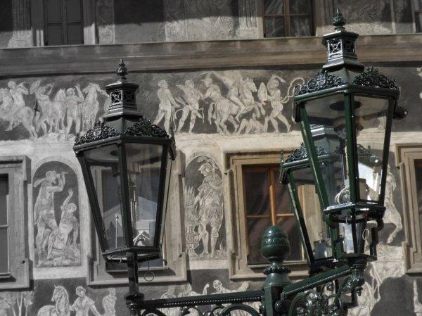Фото №5 - Голуби эзотерической столицы