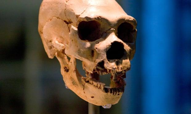 Фото №1 - В геномах африканцев нашли следы неизвестных гоминид