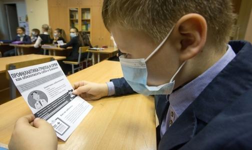 Фото №1 - Главный санитарный врач Петербурга объявила об эпидемии гриппа в городе