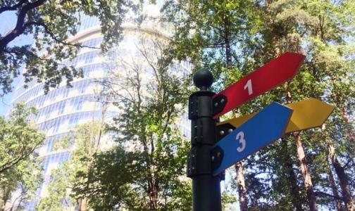 Фото №1 - В Удельном парке появились маршруты для прогулок от врачей центра им. Алмазова