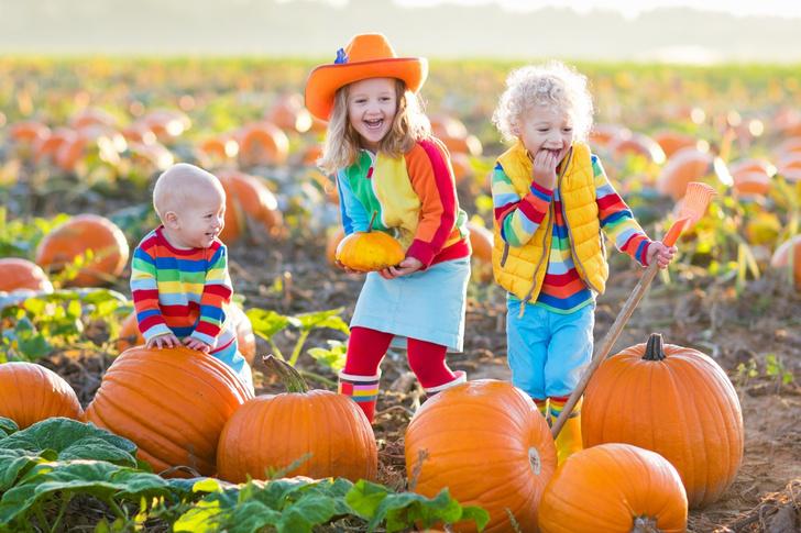 Фото №3 - Стоит ли детям отмечать Хэллоуин?