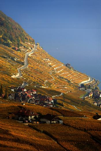 Фото №3 - Швейцария: люби ее по-французски!