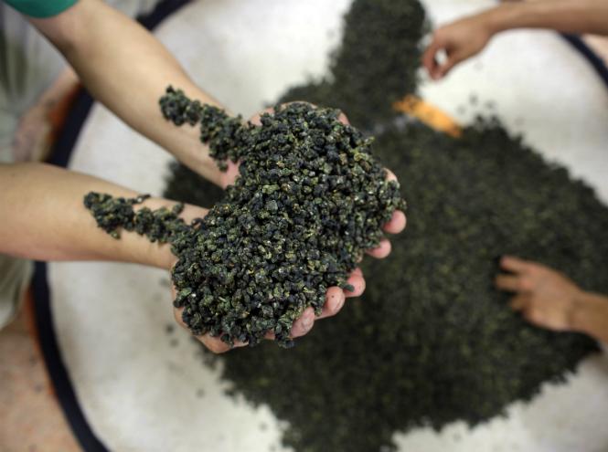 Фото №2 - Чайные плантации: как создается самый популярный напиток