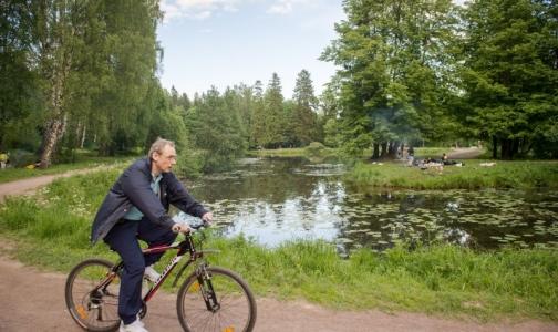 Фото №1 - Названы районы Ленобласти с самым чистым воздухом