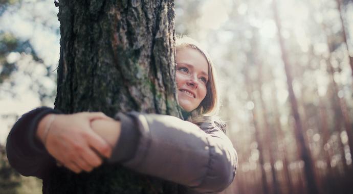 Зачем обнимать деревья: как нам помогает дендротерапия
