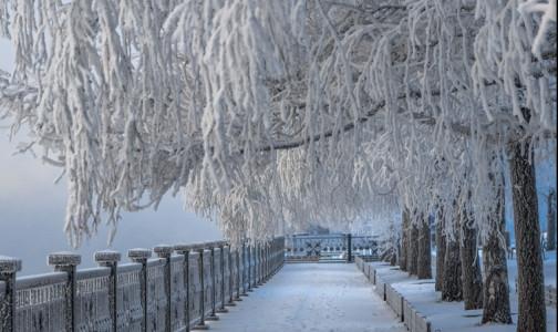 Фото №1 - Врачи посоветовали, как избежать обморожений в сильные морозы