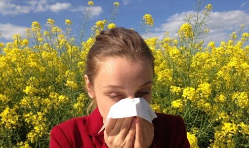 Фото №1 - Социологи выявили самую распространенную аллергию у россиян