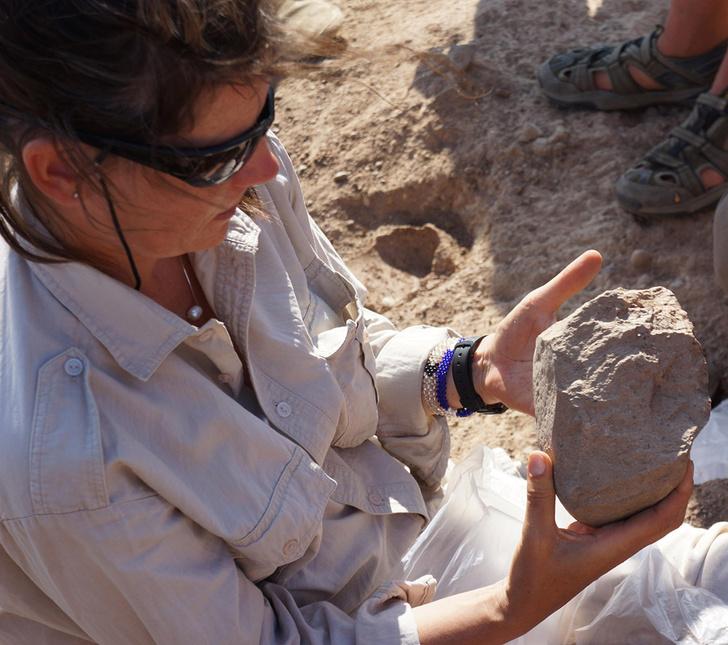Фото №2 - В Кении найдены древнейшие орудия труда возрастом 3,3 млн лет
