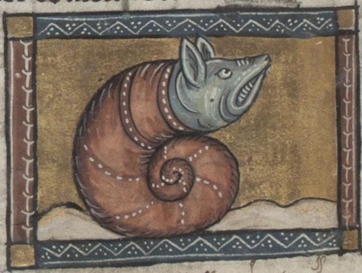 Фото №2 - Как в старину художники изображали животных, которых никогда не видели (25 странных существ)