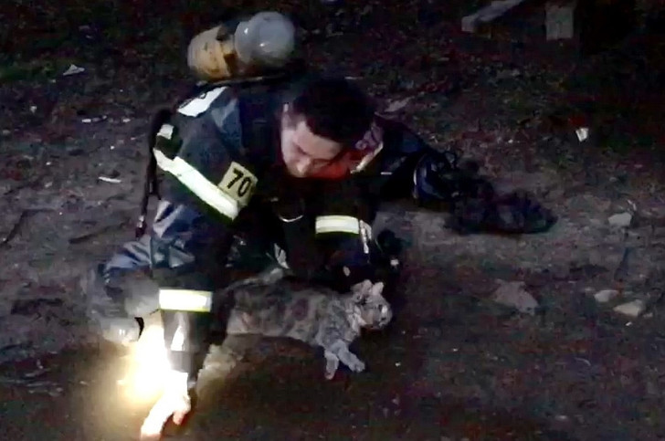 Фото №1 - Тверской пожарный спас кота, надышавшегося угарным газом (видео)
