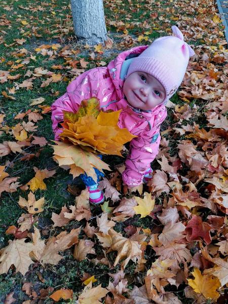 Фото №4 - Детский фотоконкурс «Собираем гербарий»: выбирай лучшее фото