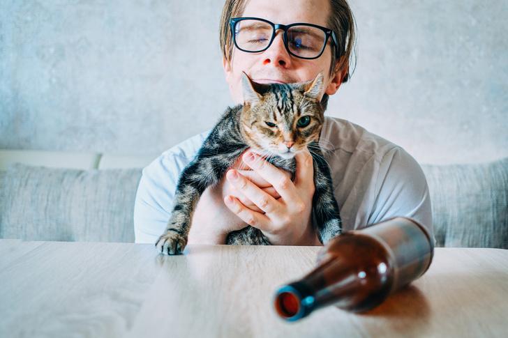 Фото №1 - Как забыть кота
