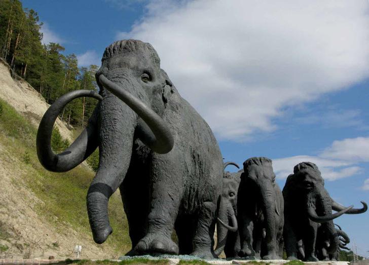 Фото №4 - Усы, лапы, хвост: 7 удивительных памятников животным