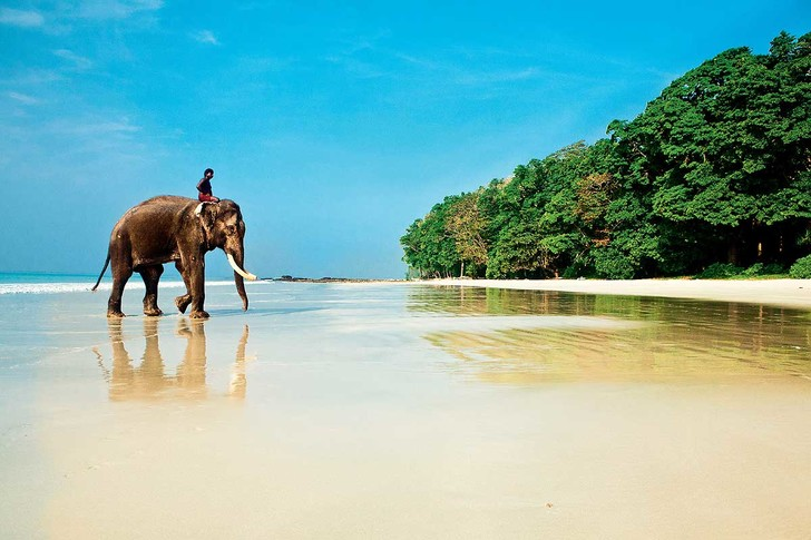 Фото №1 - Индийское лето