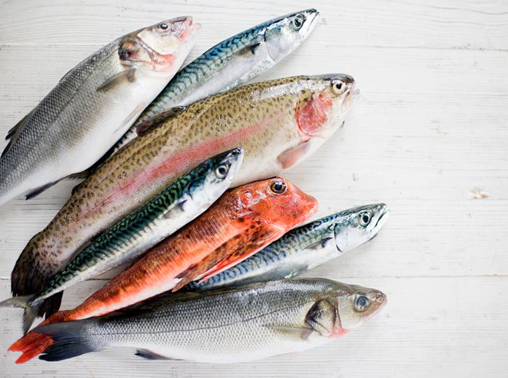 Фото №1 - 10 видов рыбы, которую лучше не есть