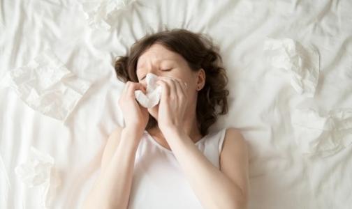 Фото №1 - В Петербурге заработала «горячая линия» по гриппу