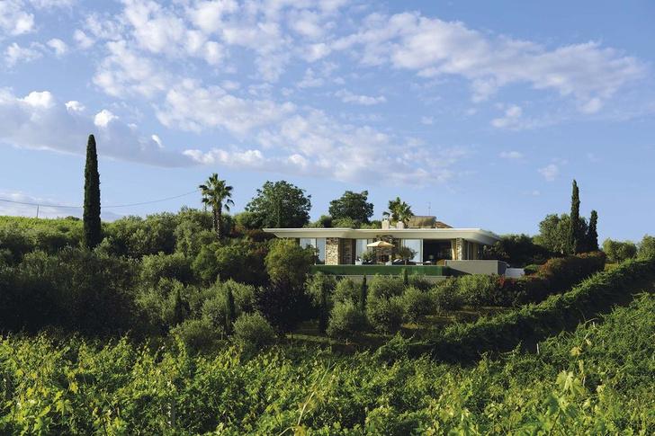 Фото №11 - Вилла среди виноградников в Абруццо