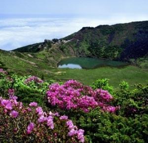 Фото №1 - В Южную Корею - без визы