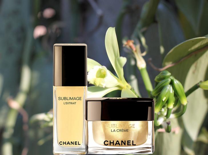 Фото №1 - Самые дорогие косметические средства: Sublimage от Chanel