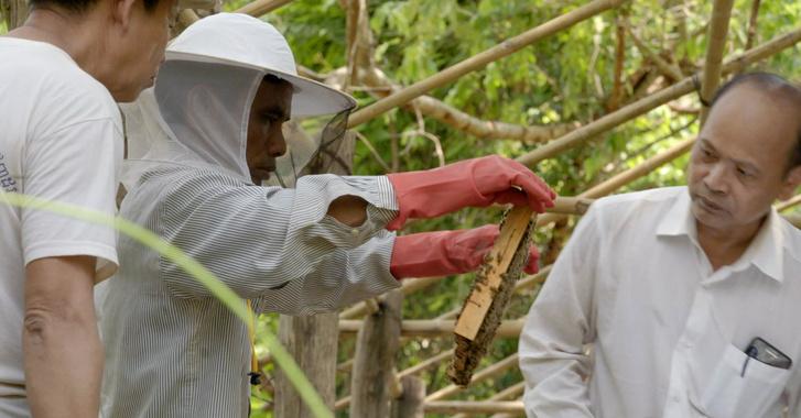 Фото №3 - Анджелина Джоли и Guerlain запускают эко-проект в поддержку женщин-пчеловодов