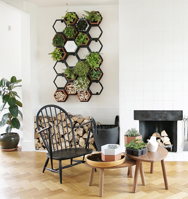 Фото №2 - Модульная зеленая стена от Horticus