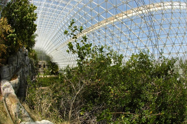 Фото №5 - «Биосфера-2»: двухлетний эксперимент по выживанию в замкнутой среде, который провалился