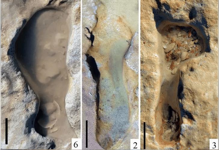 Фото №1 - Обнаружены самые старые следы неандертальцев в Европе