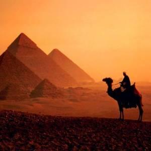 Фото №1 - Туристы вышли из Египта
