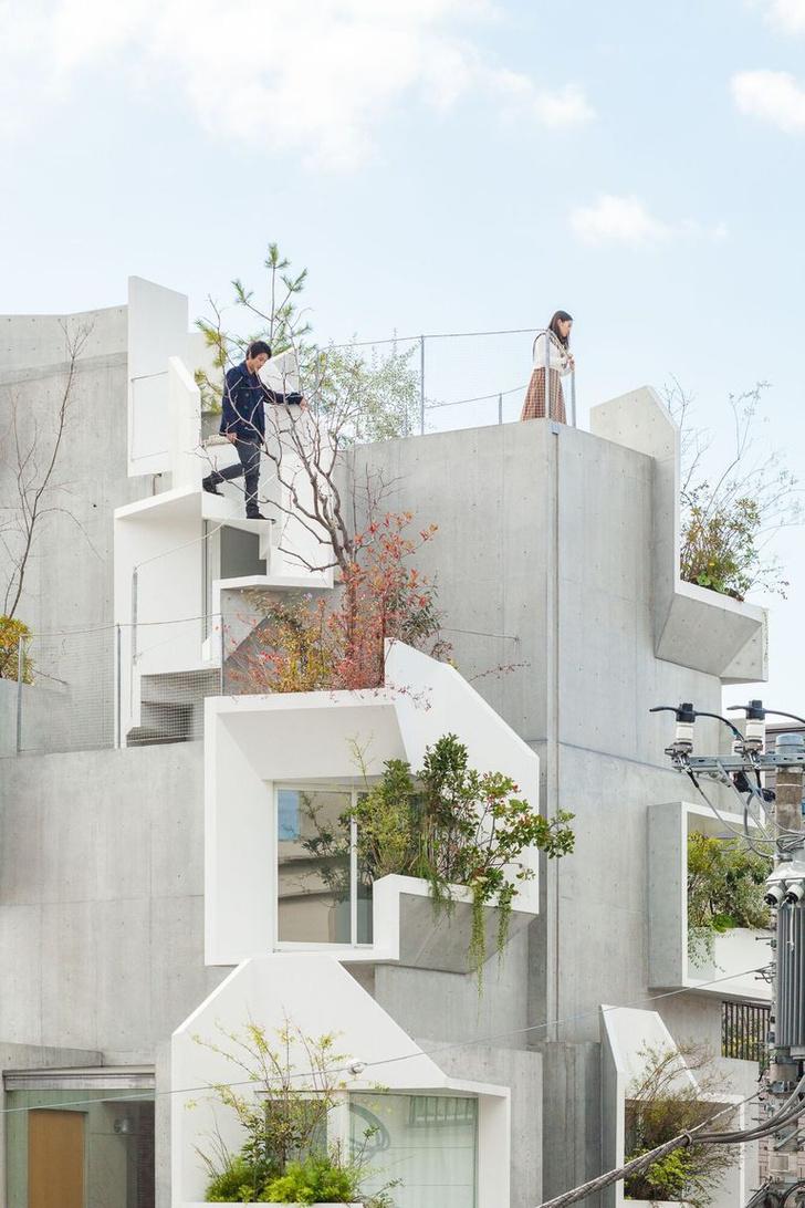 Фото №2 - Бетонные джунгли: дом в Токио