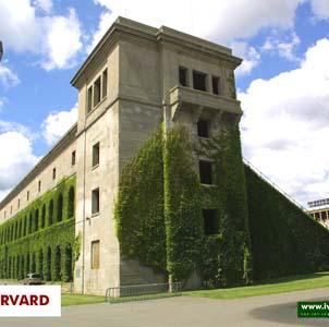 Фото №1 - Гарвард впервые возглавила женщина