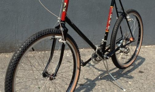 Фото №1 - На велосипеде за здоровым сердцем