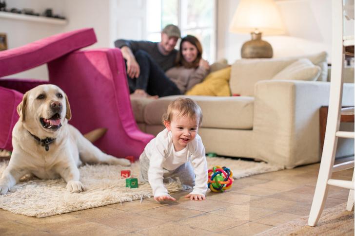 Фото №1 - Чему домашний питомец на самом деле учит вашего ребенка