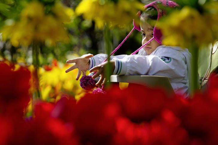 Фото №10 - Нескучный сад